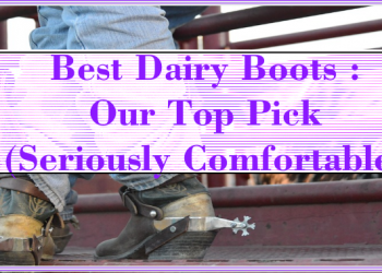 Best Dairy Boots : Our Top Pick (Seriously Comfortable)