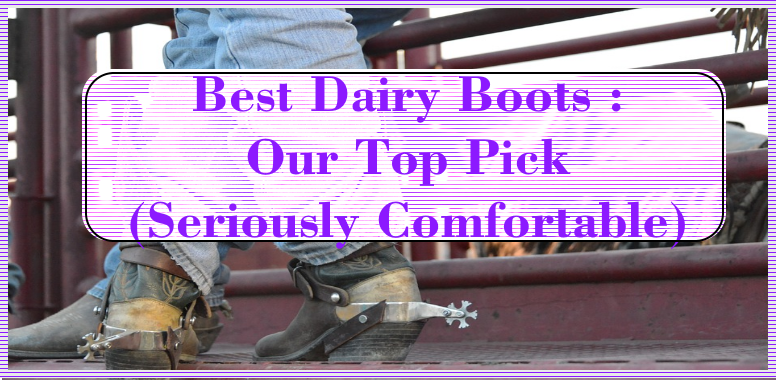 Best Dairy Boots Our Top Pick (Seriously Comfortable)